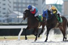 200312 名古屋9R ミカエル・ミシェル騎手-01