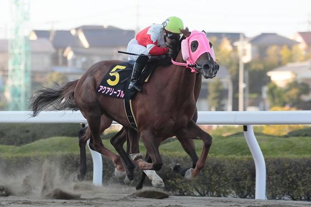 200325 桜花賞-01 優勝はアクアリーブル