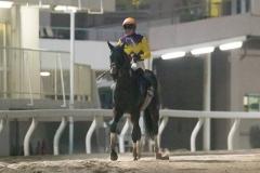 200603 東京ダービー-10