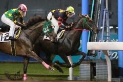 200717 2020川崎ジョッキーズカップ第3戦-05