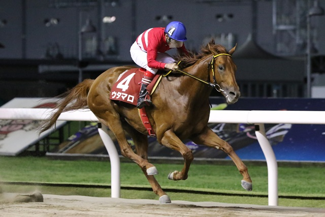 200901 芙蓉賞-01 優勝はウタマロ