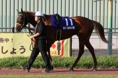 201012 秋の鞍-06