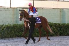 201012 秋の鞍-07