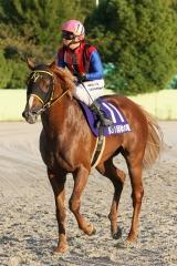 201012 秋の鞍-08