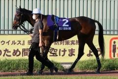 201012 秋の鞍-09