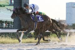 201012 秋の鞍-10