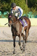 201012 秋の鞍-11