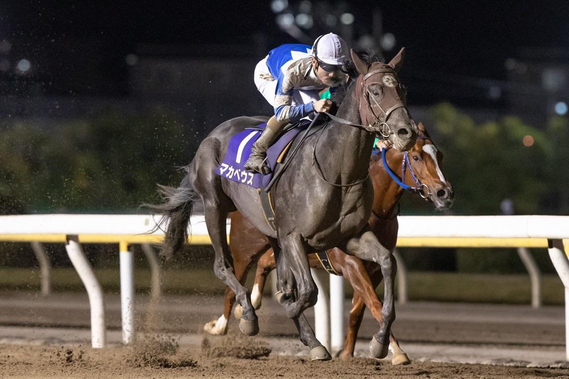 201028 平和賞-01 優勝はマカベウス