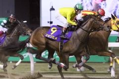 201110 ローレル賞-13