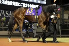 201111 ロジータ記念-19