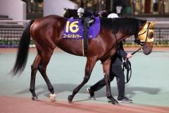201209 勝島王冠-02