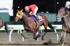 201209 勝島王冠-03