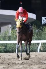 201209 勝島王冠-04
