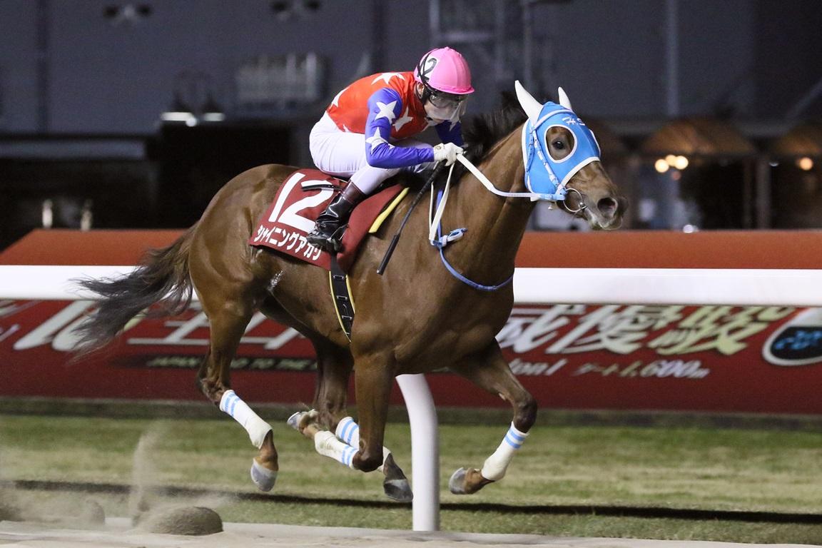 201215 マジェスティックチャレンジ-01 優勝はシャイニングアカリ