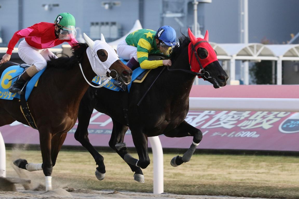 201218 スパーキングデビュー-01 優勝はスターレイジング