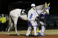 201218 ホワイトクリスマス賞-03