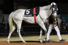 201218 ホワイトクリスマス賞-06