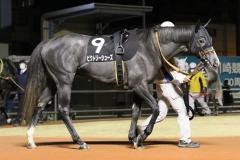 201218 ホワイトクリスマス賞-10