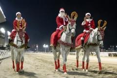 201218 ホワイトクリスマス賞-16