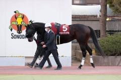 201104 兵庫ゴールドトロフィー-01