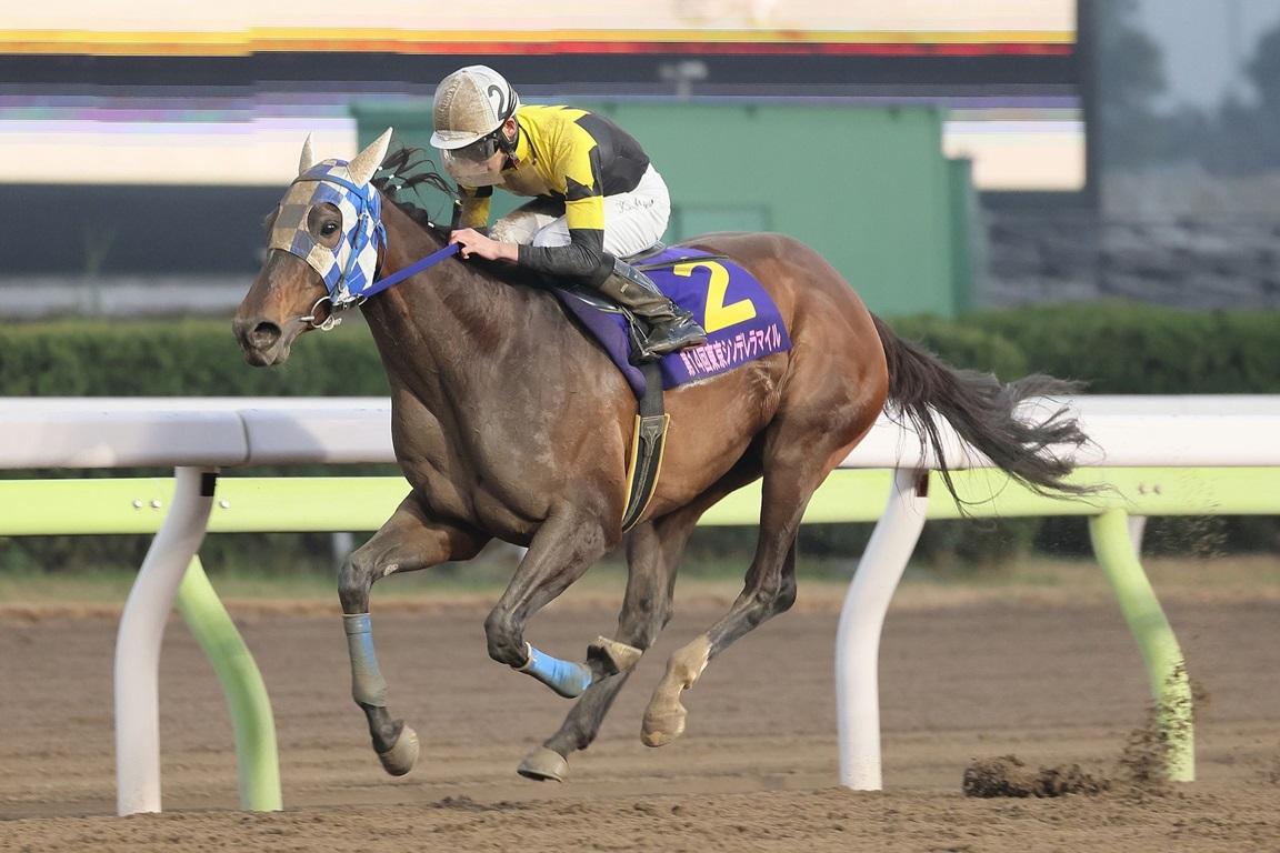 201230 東京シンデレラマイル-01 優勝はダノンレジーナ