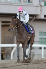 201231 東京2歳優駿牝馬-10