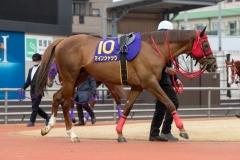 210127 川崎記念-06