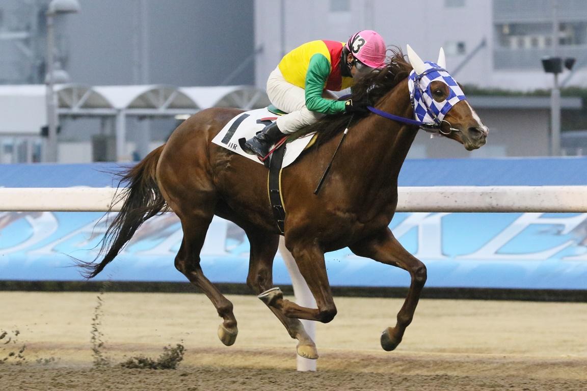 210128 多摩川オープン-01 優勝はファルコンウィング