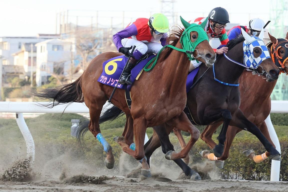 210223 ユングフラウ賞-01 優勝はウワサノシブコ