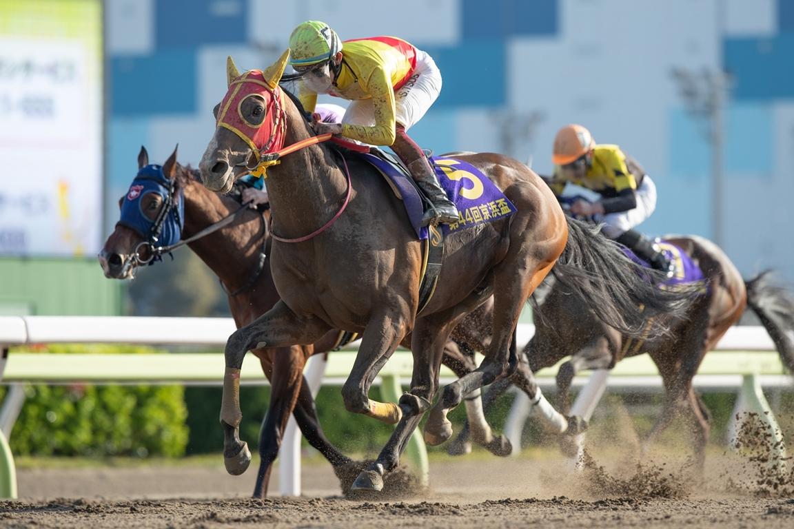210324 京浜盃-01 優勝はチサット