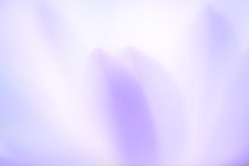 0327_202003271020036eb.jpg