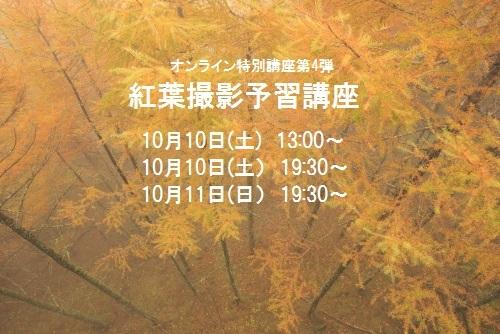 01 (14)xhhggg - コピー