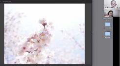 スクリーンショット (1039)x