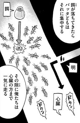 higanjima_48nichigo252-20080301.jpg
