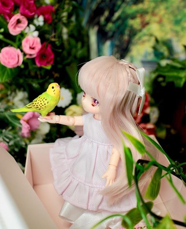 Obitsu11Tyrol-Dollybird-0004.jpg