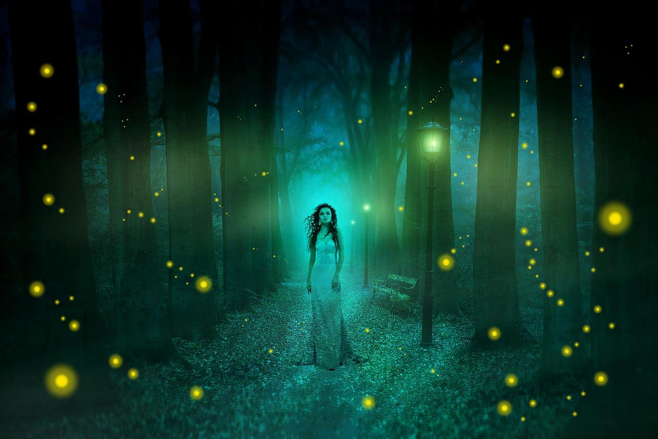 樹木のエネルギーは深夜に最高になる by天空オフィシャルブログ所蔵画像