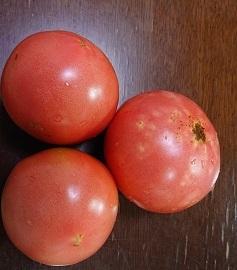 30714 トマト