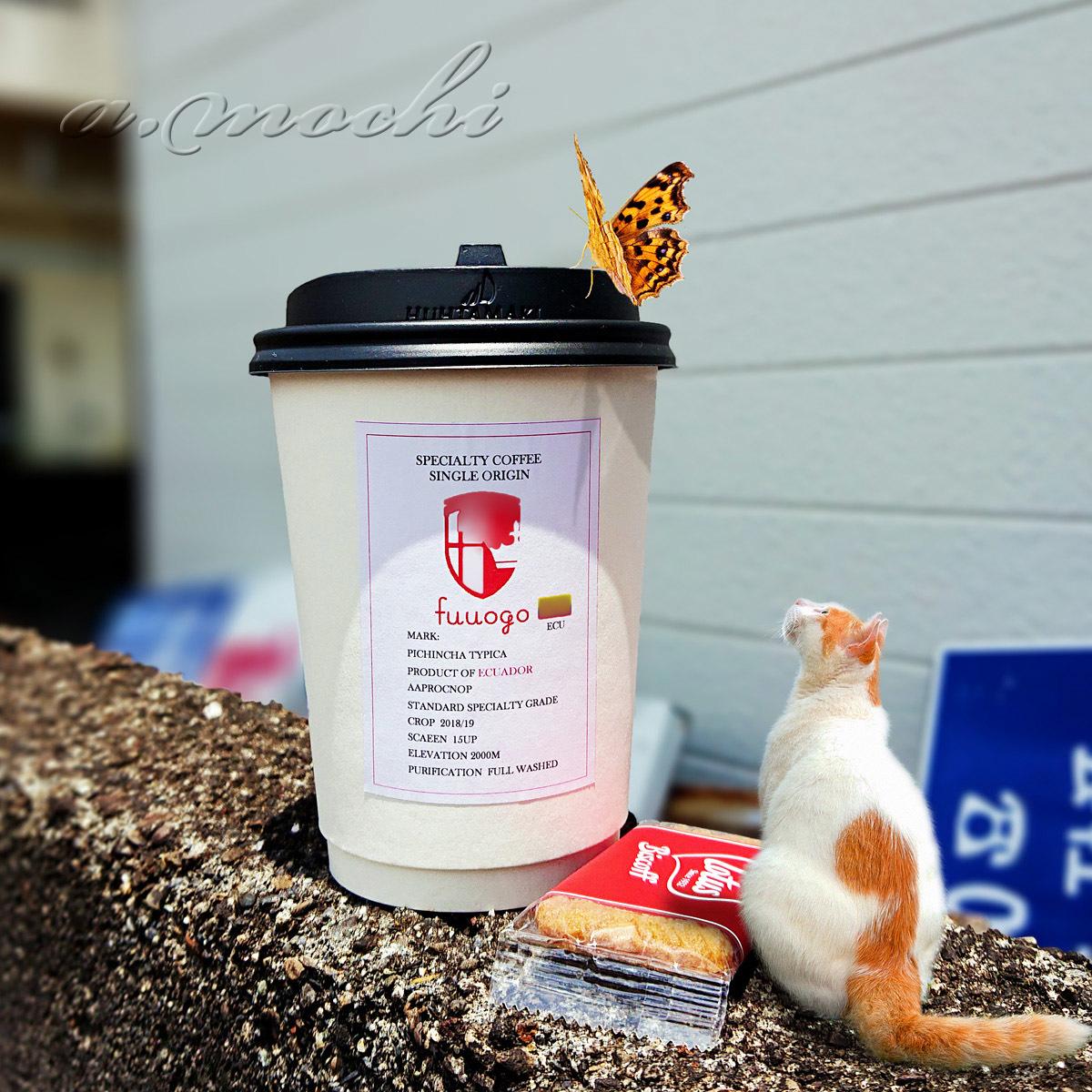 1_fuuogo4_coffee.jpg