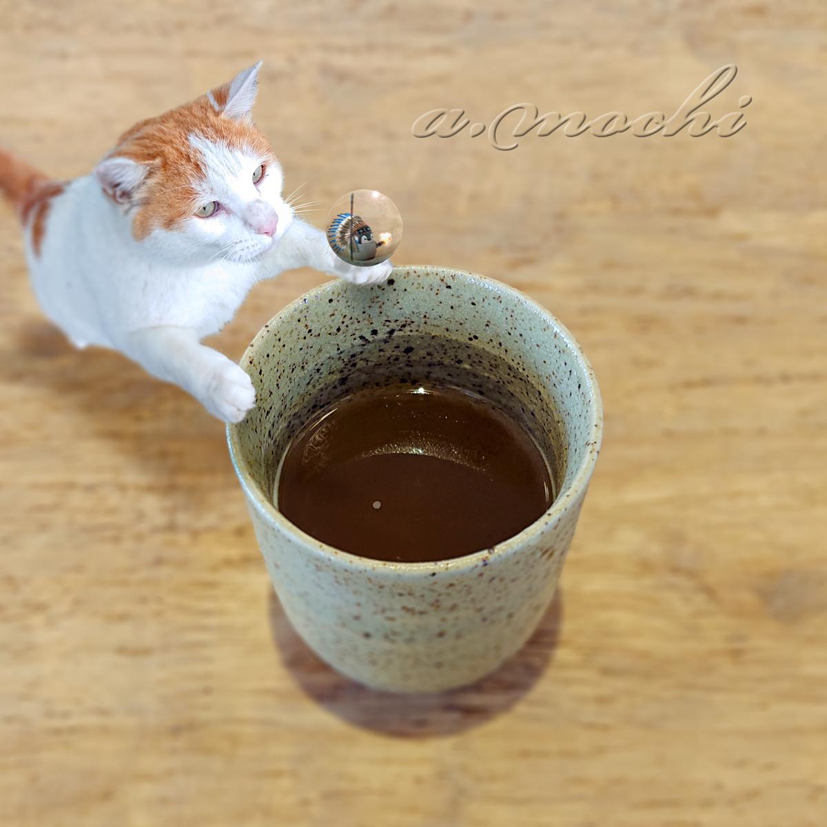 3_densichi_ocha.jpg