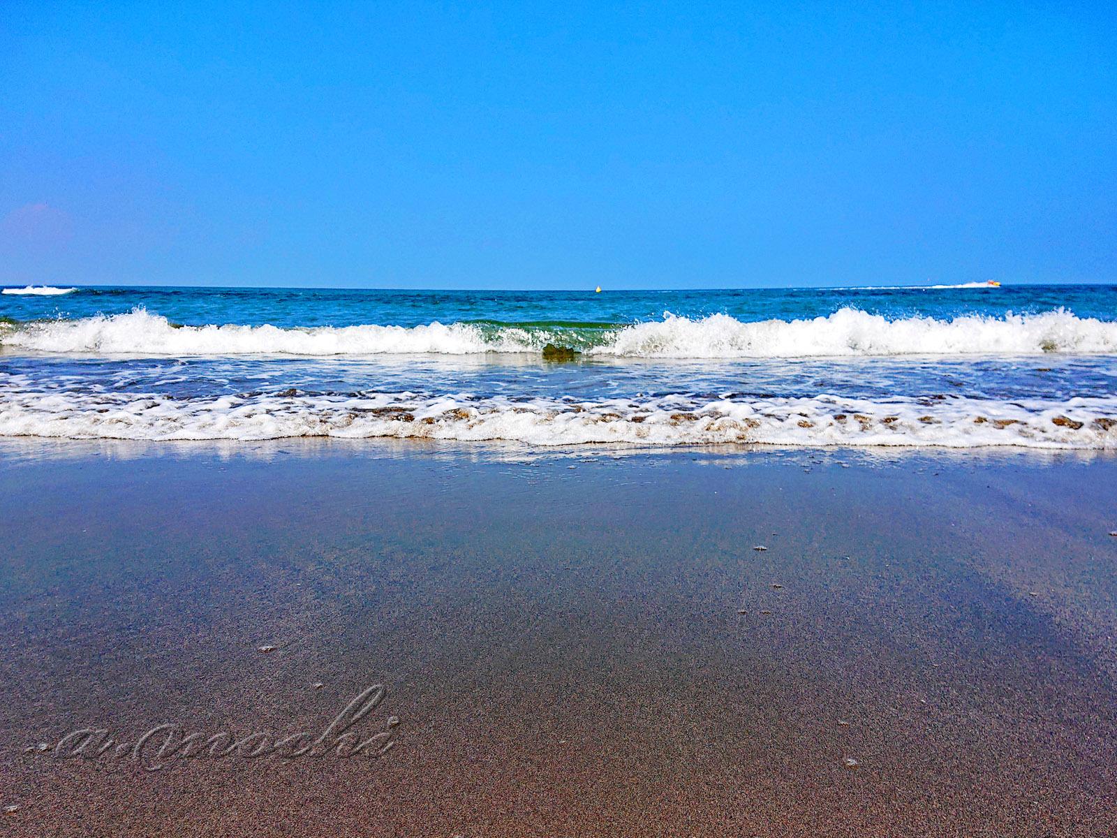 aoshima_coast.jpg