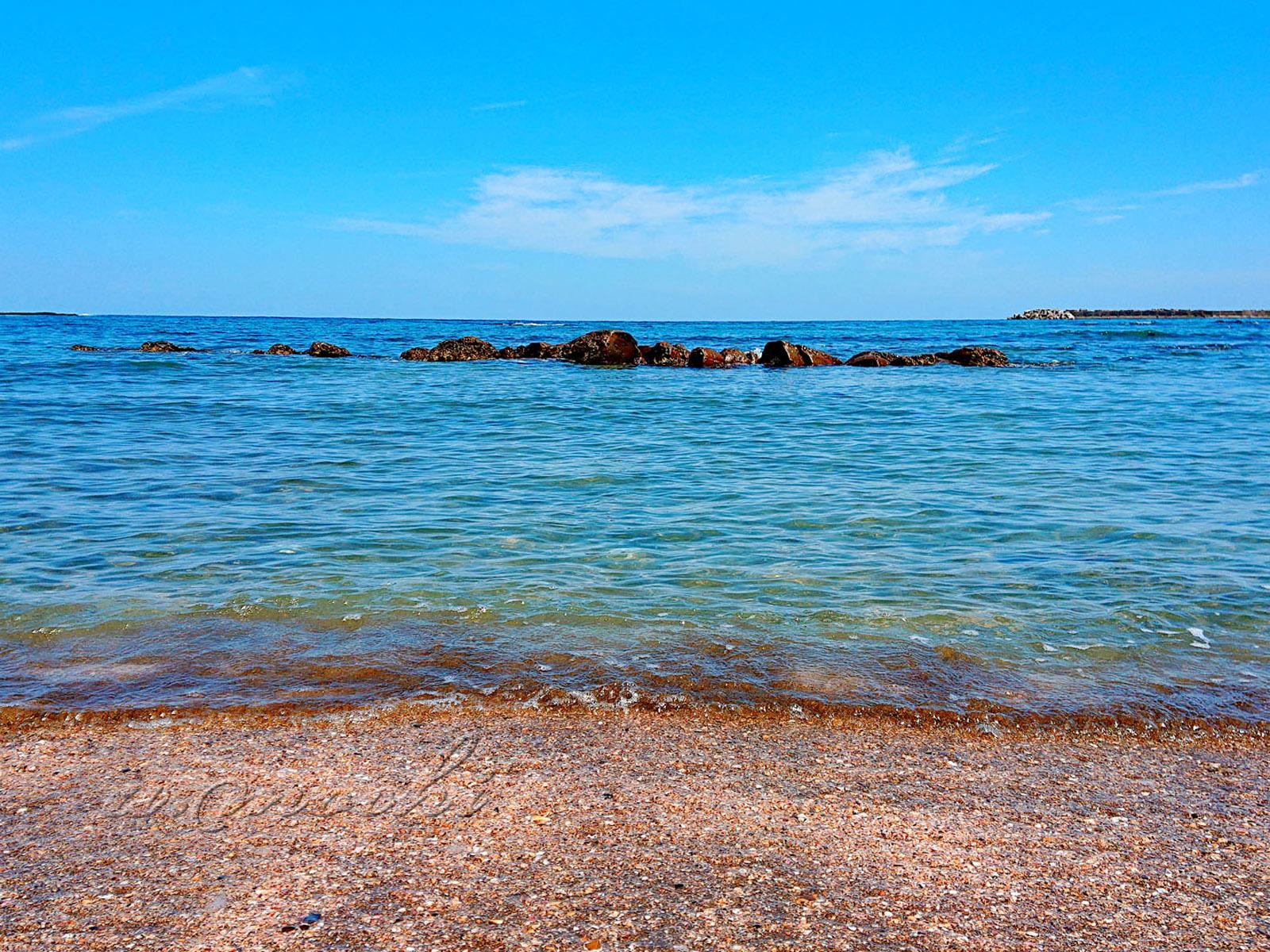 aoshima_coast2.jpg