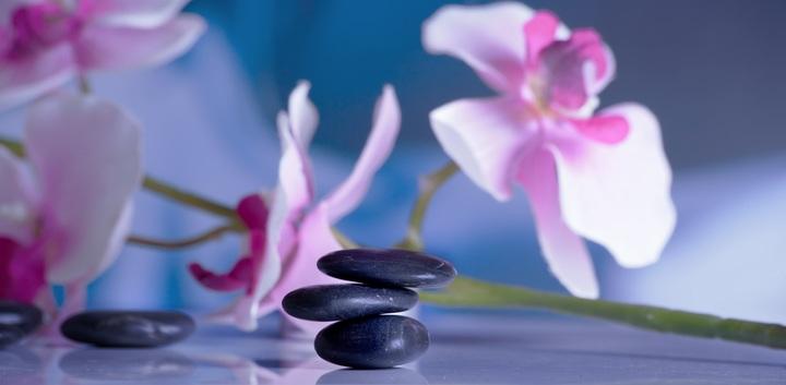 blossom-plant-flower-purple-petal-relax-762339-pxhere-com.jpg