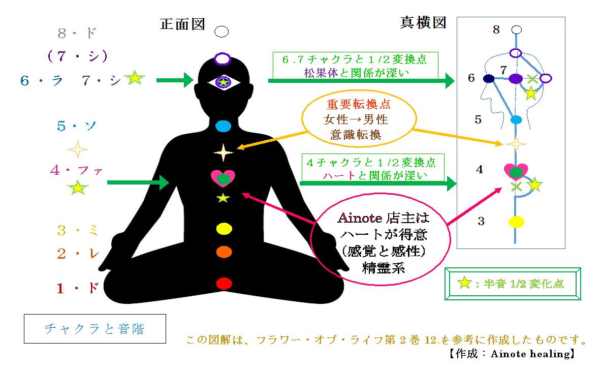 new-ainote-zazen-tkr-zu.png