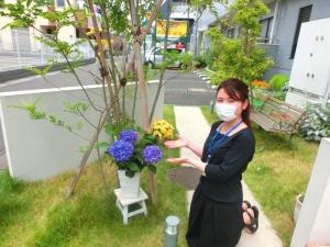 紫陽花が仲間入りしました♪
