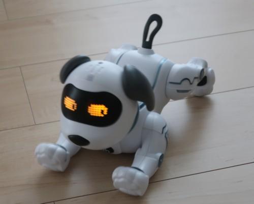 robot dog 072420 (3)