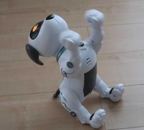 robot dog 072420 (12)