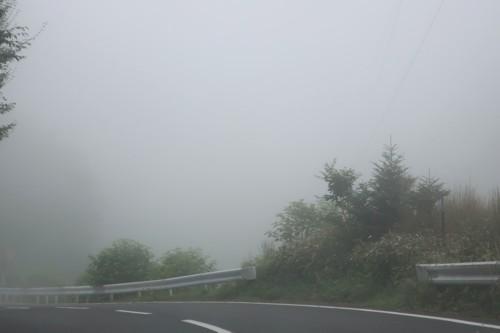 go to travel nikko091720 (25)