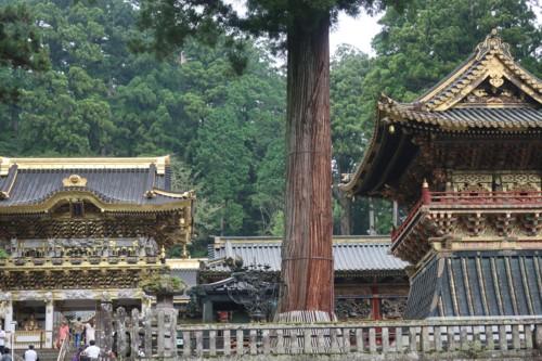 go to travel nikko091820 (29)