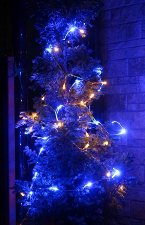 xmas tree lights (10)