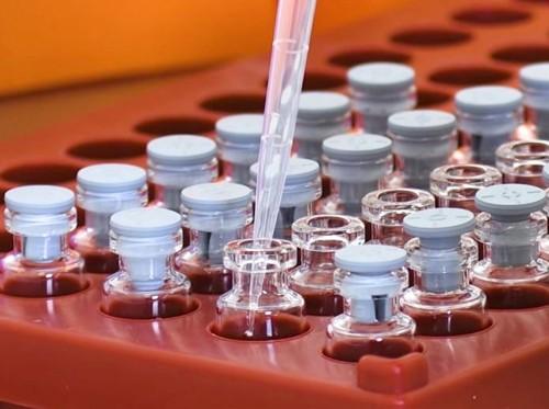 oxford_vaccine_development (1)
